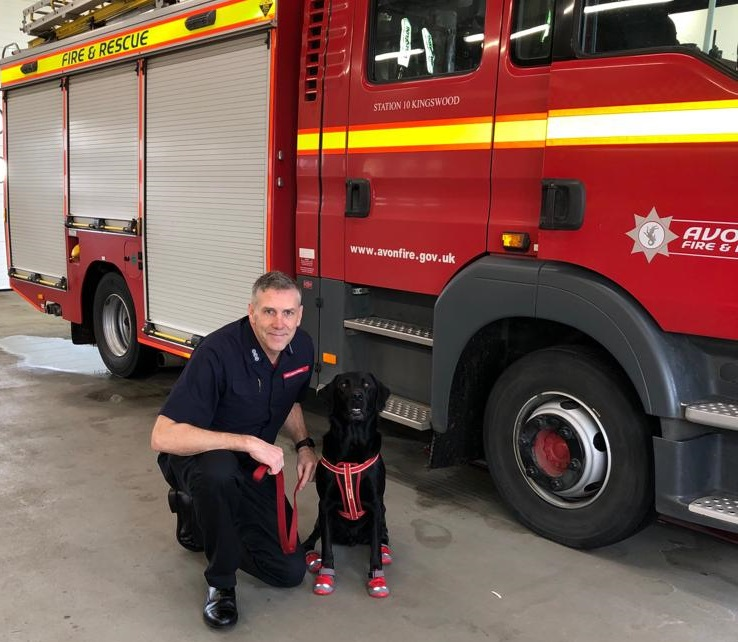 AF&RS welcomes four-legged fire investigation recruit